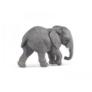 50169 Jeune Elephant d'Afrique