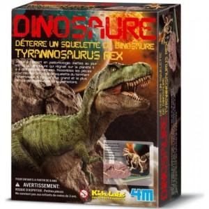 Kit de Fouille T Rex Deterre ton Dinosaure