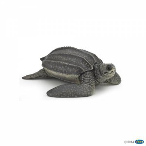 56022 Tortue Luth