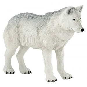 50195 Loup Polaire