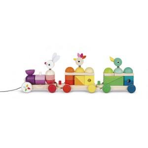 Train Geant Multicolor Zigolos