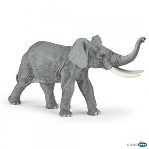 50215 Elephant d'Afrique