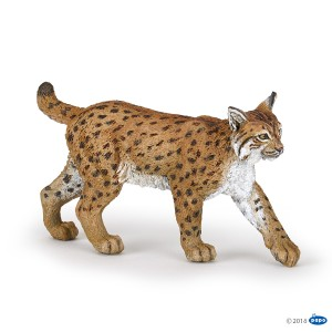 50241 Lynx