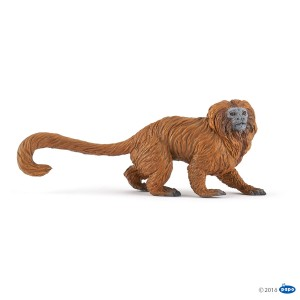 50227 Tamarin Lion Doré