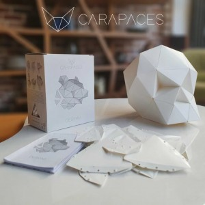 Carapaces By Doug Blanc