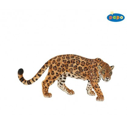 50094 Jaguar