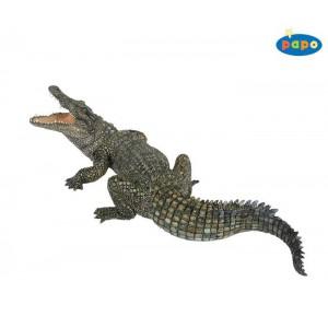 50055 Crocodile du Nil