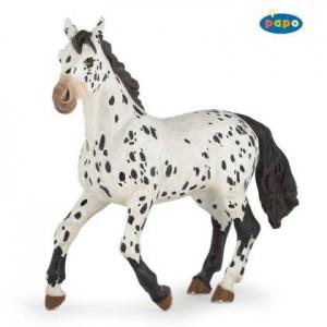 51539 Cheval Appaloosa noir