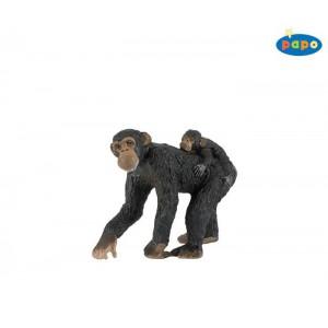50012 femelle chimpanze et son bebe