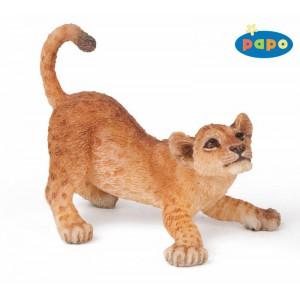50126 lionceau jouant