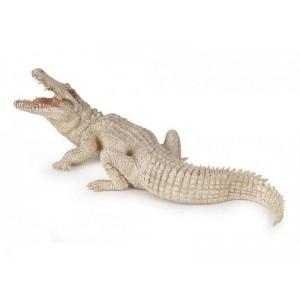 50140 crocodile du nil blanc