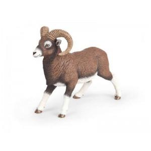 53018 mouflon