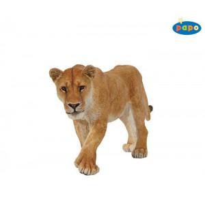 50028 Lionne
