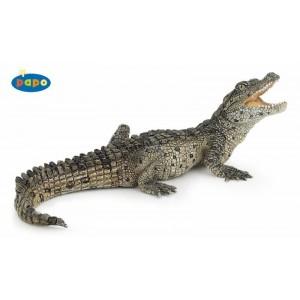 50137 Bébé Crocodile