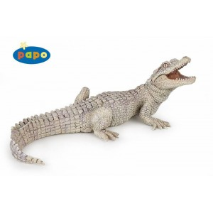 50141 bebe crocodile blanc