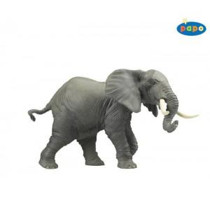 50010 elephant