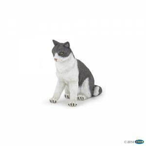 54033 Chatte Assise
