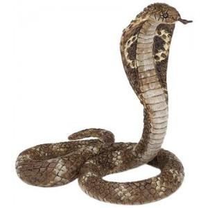 50164 Cobra royal - serpent