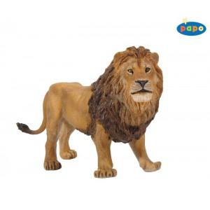 50040 Lion