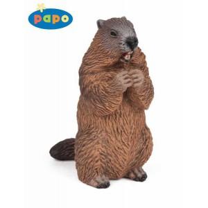 50128 Marmotte