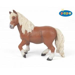 51518 poney shetland