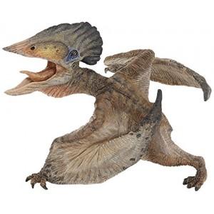 55038 Tupuxuara Dinosaure